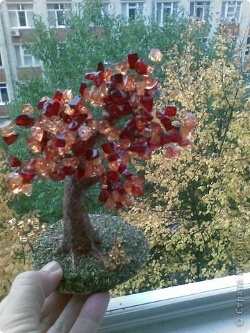 Вот такое янтарное дерево у меня получилось. Делала первый раз, поэтому не знаю все ли я правильно сделала, а может чего-то не хватает? Приму любые замечания и критику. фото 5