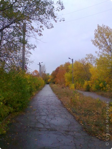 прогулка по парку:) фото 4