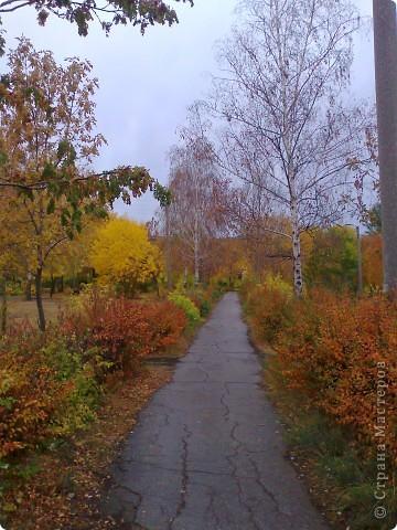 прогулка по парку:) фото 1