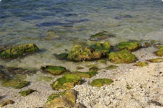 Мыс Тарханкут, полуостров Тарханкут находятся на западе Крыма.  Уникальная природная экосистема и самая экологически чистая акватория Черного моря находятся именно здесь.                                                                    Когда-то полуостров носил название Эски Форос, означающее Старый маяк, и правда на морских картах ХIV века, есть обозначения этого места.  Судя по названию мыса Атлеш (огонь), маяк существовал здесь с древнейших времен. Позднее появилось укрепленное сооружение, дававшее сигналы проходящим судам. Маяк существует и в наше время (башня высотой 42 м была построена из белого инкерманского известняка в 1816 г), нынче это современное строение оборудованное по последнему слову техники. фото 36