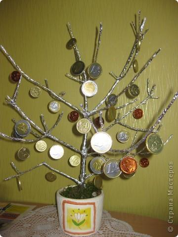 Конфетное дерево. фото 4