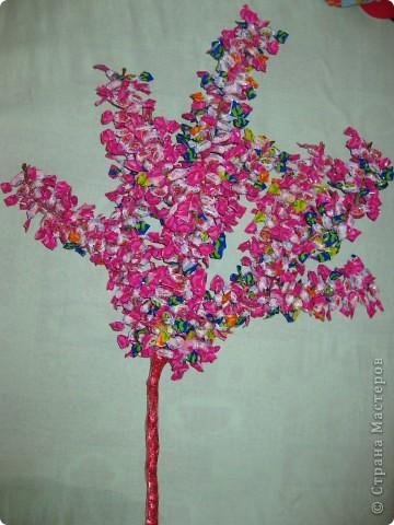Конфетное дерево. фото 2