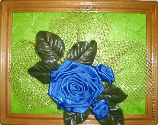 картины с розами фото 1