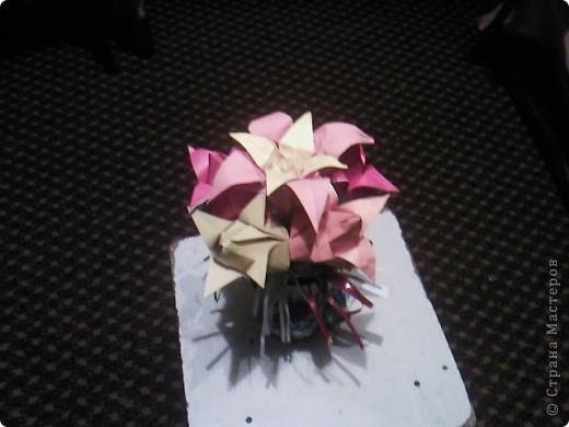 Лилия отдельно в разнх ракурсах. фото 3