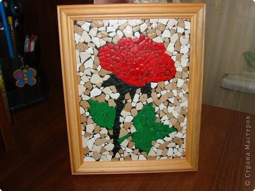 Роза на стекле