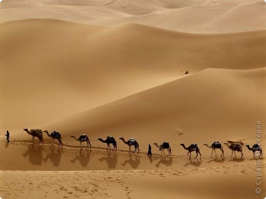 Вот такую картину акрилом нарисовала моя племянница Елизавета.Веблюд идет по пустыне,светит солнце.В далеке виднеются верблюды и следы. фото 6