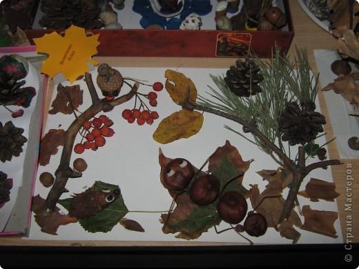 """утренник(оформление зала) и выставка """"Осень"""" фото 3"""