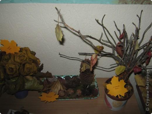 """утренник(оформление зала) и выставка """"Осень"""" фото 26"""