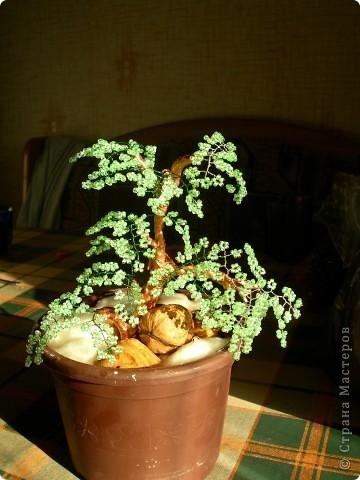 первое дерево - как то так))) фото 1