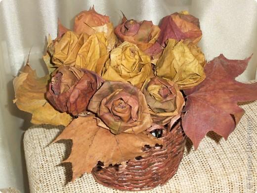 Это розы фото 1