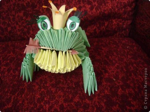 А вот и моя царевна-лягушка фото 1