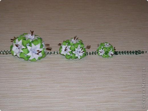 Три лилии фото 4