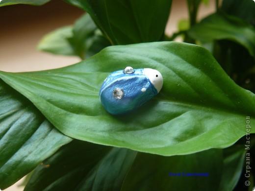 Майский жук (серьга гвоздик) фото 1