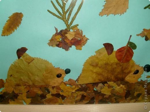 Сынуле в детский садик сделала вот такую картину из засушенных листьев.  фото 3