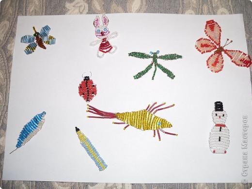 Выставка насекомых фото 2
