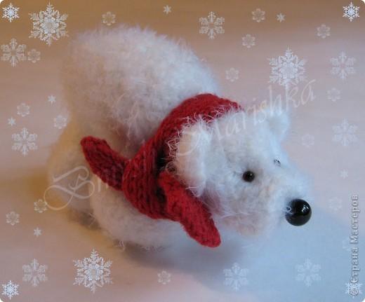Снежок живет на Северном полюсе, знаком с Умкой. Любит ловить снежинки и любоваться звездочками.  фото 1