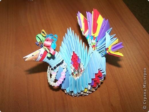 Курица фото 1