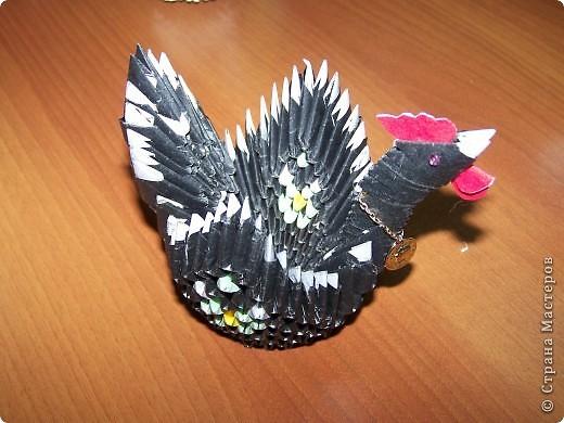 Курица фото 2