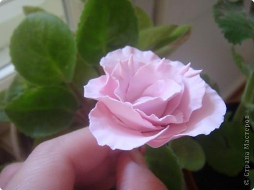 пробовала холодный фарфор маленькие цветочки фото 3