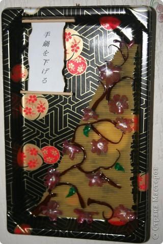 Долго лежал у меня этот лоток из японского ресторана, выкидывать жаль, а идеи нет! И как то бессонной ночью... Как раз очень хотелось попробовать цветы из пластиковых бутылок! фото 1