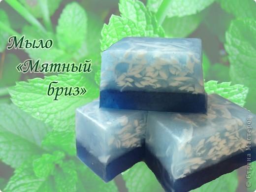 Мыло с люфой и косметическим золотистым пигментом, аромат красной смородины. фото 7