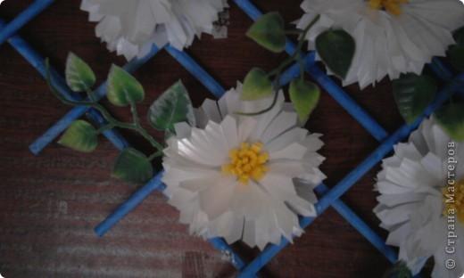 Цветы сделаны из пластиковых стаканов. фото 2