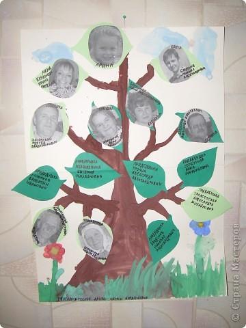 Наше генеалогическое древо