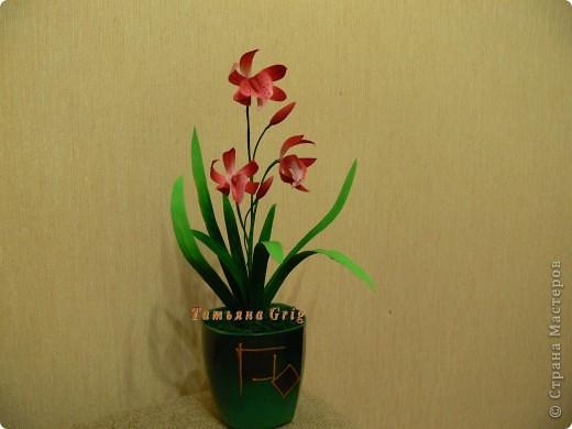 Вот такие орхидеи получились у меня!!!! Ура!!! Делала их долго, все времени не хватало их доделать. фото 1