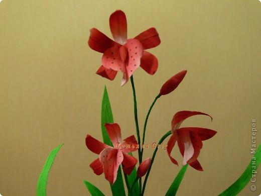 Вот такие орхидеи получились у меня!!!! Ура!!! Делала их долго, все времени не хватало их доделать. фото 2