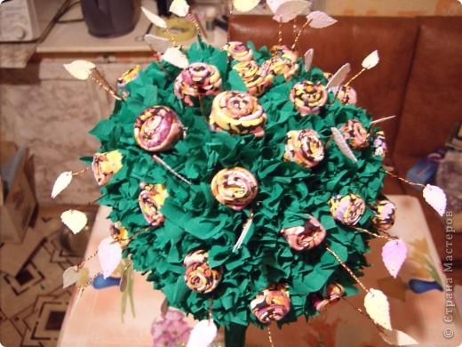 Деревце номер два фото 2