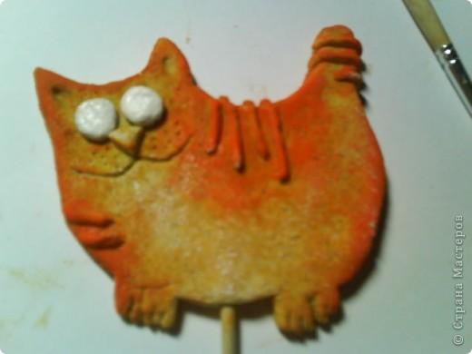Котик фото 7