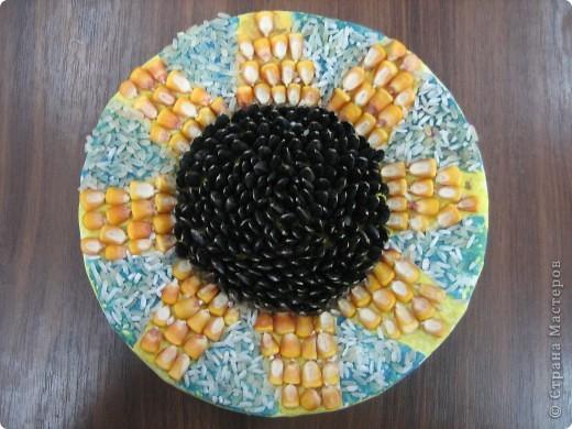 Панно из семян. Крупные элементы наклеены на картонные кружочки с помощью клея ПВА. фото 3