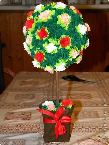 Мои первые деревца счастья :) фото 2