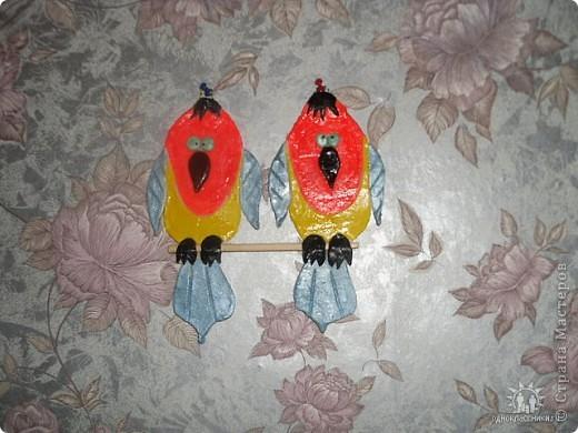 Попугайчики-повторюшки