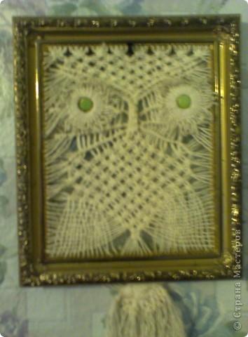 совушка фото 1