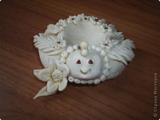 Курочка- соленушка гречишница  фото 2