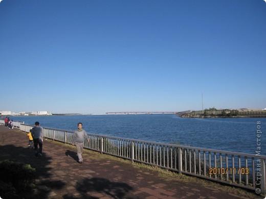 Надумали мы пойти в парк,который находится недалеко от Токийского залива. Там растет очень много сосен. В прошлом году мы там насобирали очень много шишек. Собрались на охоту и в этот раз. фото 1