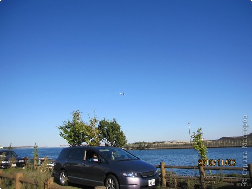 Надумали мы пойти в парк,который находится недалеко от Токийского залива. Там растет очень много сосен. В прошлом году мы там насобирали очень много шишек. Собрались на охоту и в этот раз. фото 10