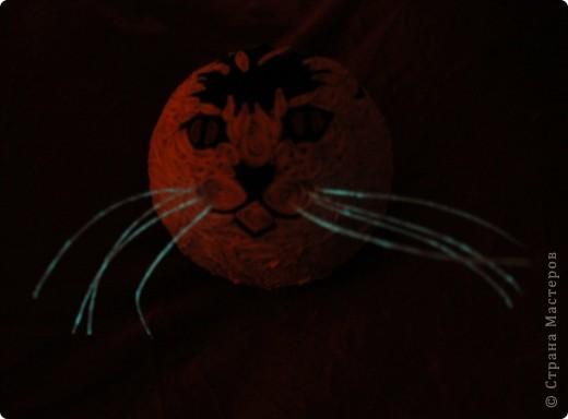 """Елочный шар """"Котик-цветные усики"""" фото 3"""