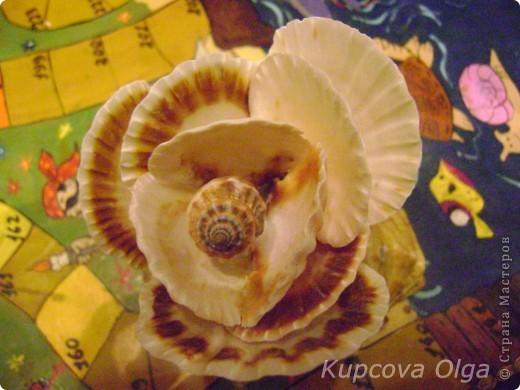 Роза из ракушек фото 3