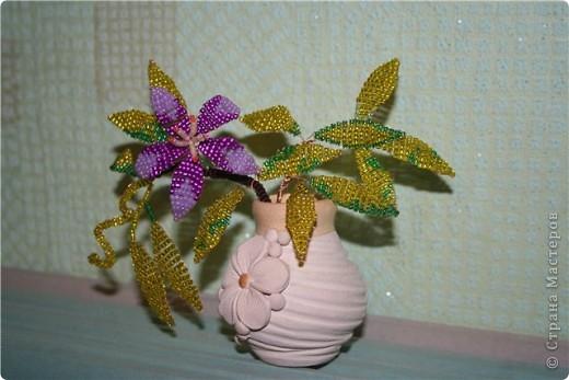 Вот такой одинокий осенний цветочек!О чем он думает?Наверное о том,что осень--яркая,цветная,золотая!!!!!!!!И не надо грустить!!!То что он одинок-не беда...За то он гордится собой!!!!!!!!! фото 1