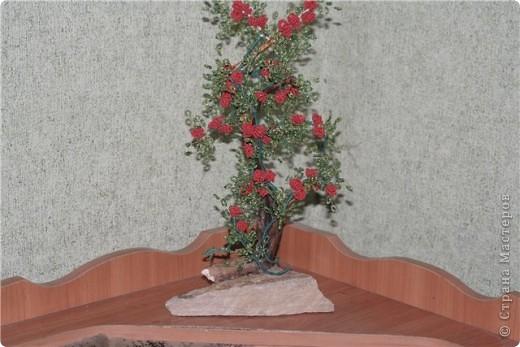 такая вот родилась работа!Кто то видит в ней пироканту,кто то плетучую розу,кто то кустик волчьих ягод....Мне просто понравилась веточка,которую подобрали с внуком..... фото 1