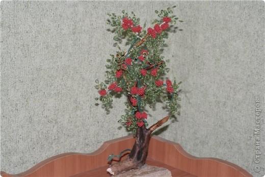 такая вот родилась работа!Кто то видит в ней пироканту,кто то плетучую розу,кто то кустик волчьих ягод....Мне просто понравилась веточка,которую подобрали с внуком..... фото 5