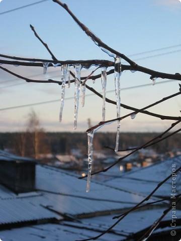 Яблоня за моим окном вся увешана сосульками..... фото 3