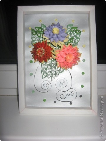 Мои цветочки фото 5