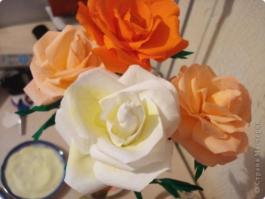 У нас тоже расцвели розы...