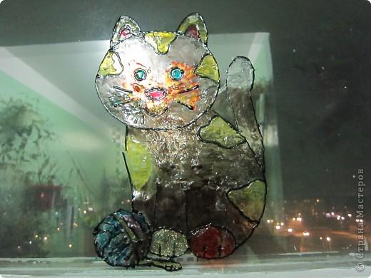 Наша кошка на окошке фото 2