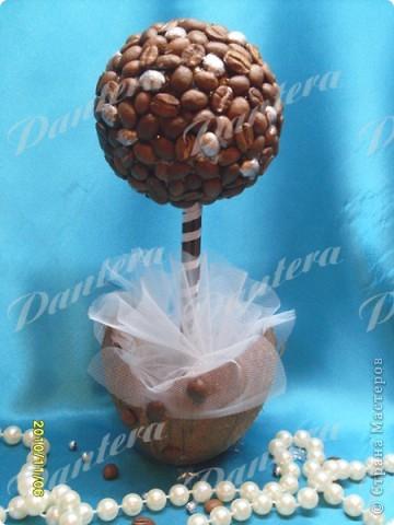 Я вырастила дерево :) Разорилась только на кофе в зернах,остальное все было.В основании шарик из бумажной массы,обклеенный зернами кофе.Ствол из деревянных шпажек,а горшочек из кокосовой скорлупки :) Очередная хотелка. Вот как то так... фото 1