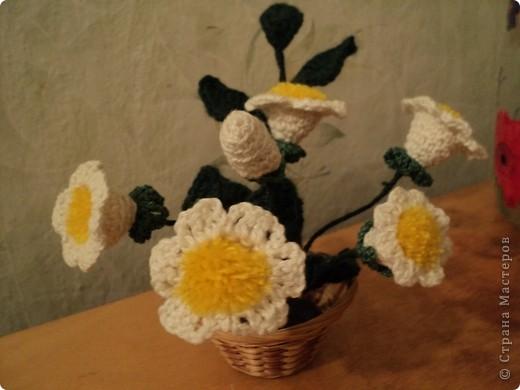 Цветы связаны уже давно и до сих пор украшают интерьер. фото 1