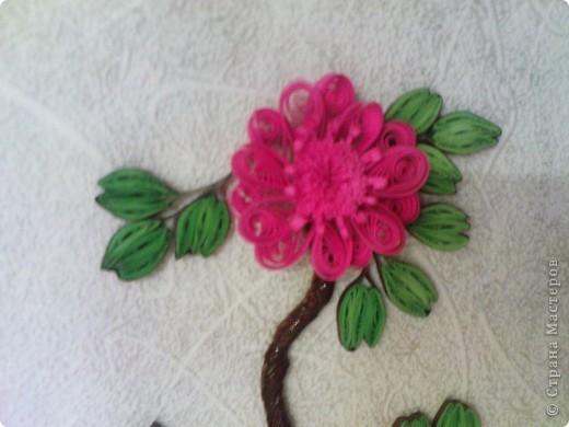 так как моя работа веточка http://stranamasterov.ru/node/87229 была подаренна ещё в августе на 20летие одной знакомой))) решила изменить цветочки и повторить работу для себя (надеюсь эта проживёт у меня дольше)))) фото 4